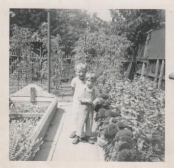 M&ME Grandma's Garden